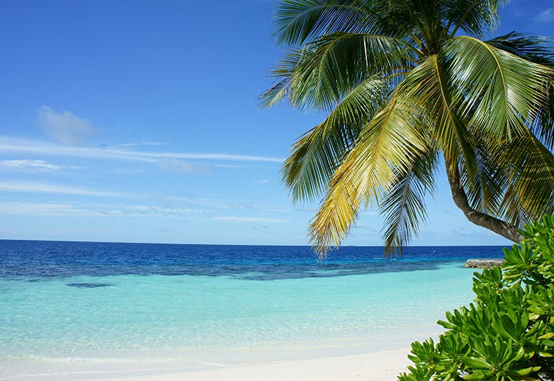 Tropical beach with white sand and blue sky