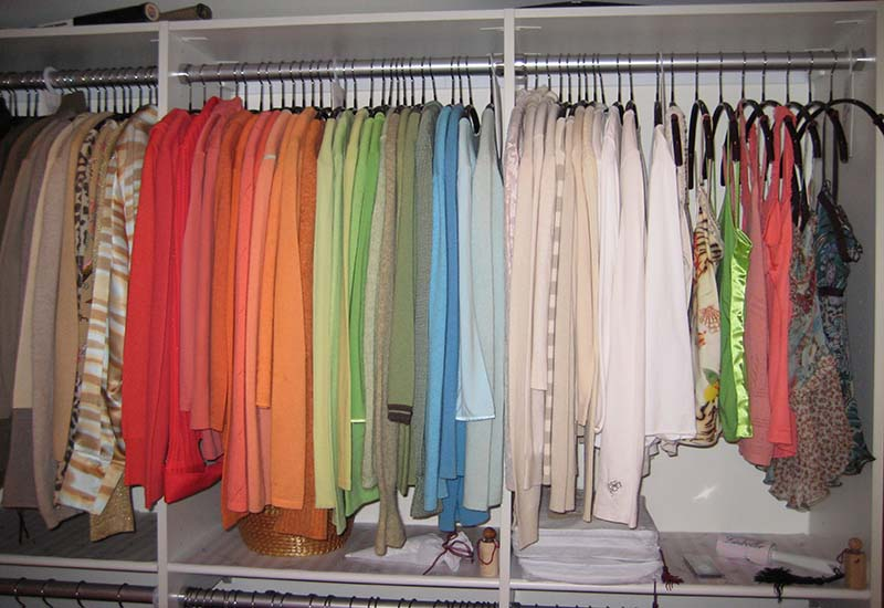 Clean Wardrobe Moth Free